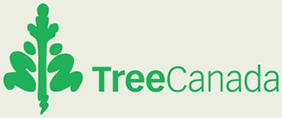 Ontario Seed Tree Plant